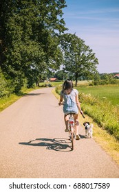 Biking with the dog through the beautiful landscape of Twente, in The Netherlands