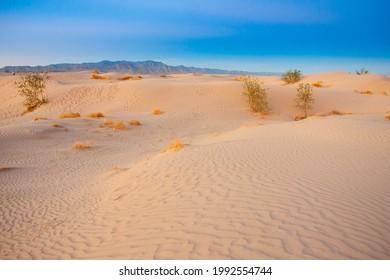 Bilbao Dunes in Coahuila México - Shutterstock ID 1992554744