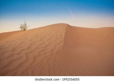 Bilbao Dunes the desert mexican - Shutterstock ID 1992556055