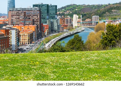 Bilbao from Etxebarria Park, Basque Country, Spain