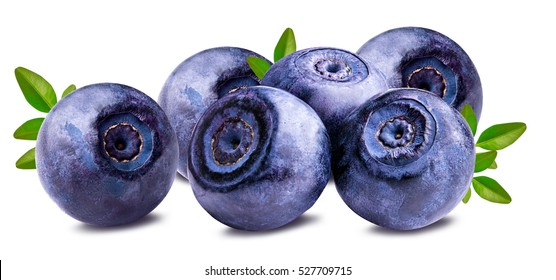 bilberry blueberries isolated on white background