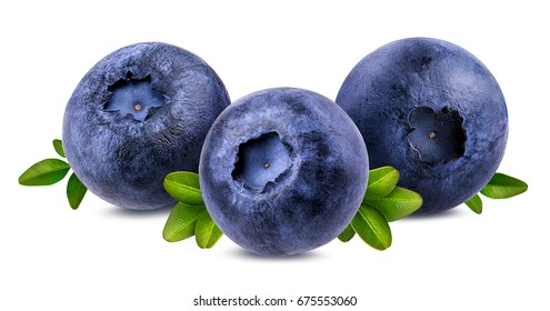 bilberry, blueberries isolated on white background