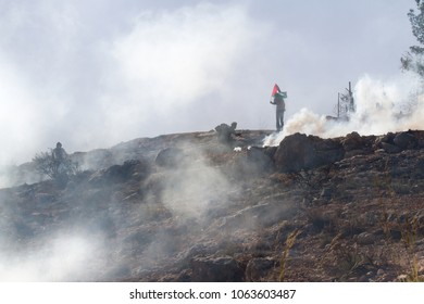 Bilin, Palestine, December 3, 2010: Protesters in a cloud of tear gas during weekly demonstrations against Palestinian land confiscation and building Jewish settlement in Bilin.