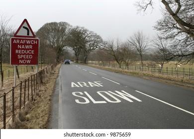 Speed Cymraeg