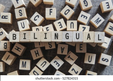 BILINGUAL word concept