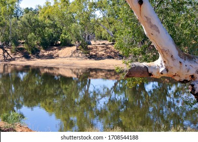 Billabong in the desert, ghost gum on right with a large broken branch, river sand in background and a forest of trees. Stunning reflections on the still water.