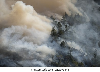 Billowing smoke from California forest fire. Lodge Fire, Mendocino County, August 2014.