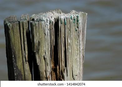 Biloxi Mississippi old wooden pier pilon