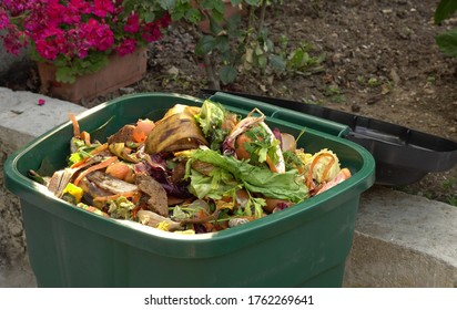 A bin filled with materials that comprise green waste, such as kitchen food wastes and plant trimmings. Organic biodegradable waste container, composting