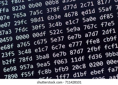 Binary code screen close up. Information security concept.