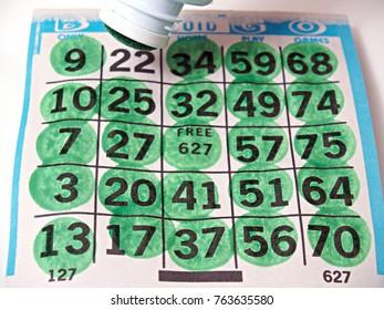 Bingo Card Game