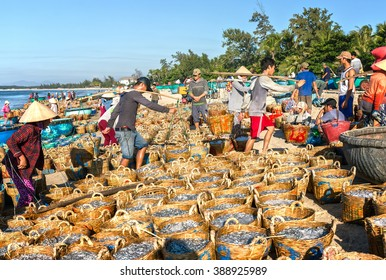 Binh Thuan, Vietnam - January 21st, 2016: Group fishermen anchovies hard burden on the coast for transport to processing workshop sauce in the morning in the fishing village of Binh Thuan, Vietnam