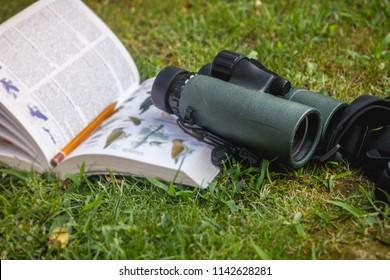 Binoculars and Bird Guide