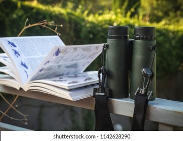 Binoculars and Bird Guide, Birdwatching setup