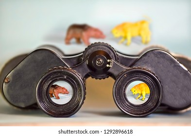 Binoculars Looking at a Bear and Bull