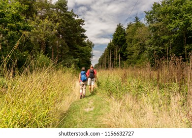 Binsted (Binstead) Wood, Arundel, West Sussex: couple hike a through tranquil  countryside and ancient woodland. Environment to be disrupted by Option 5A - A27 Arundel bypass (dual carriageway).