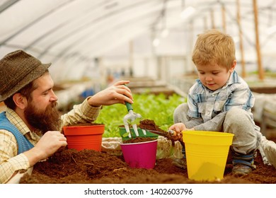 bio fertilizer. father and son put into the soil bio fertilizer. bio fertilizer production. industry production of bio fertilizer. greenery brings life to your home