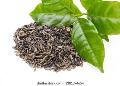 Bio green tea leaf isolated on white background