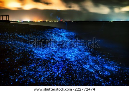 Bio luminescence. Illumination of plankton at Maldives. Many bright particles.