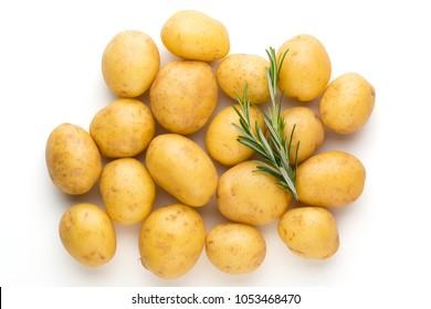 Bio potato and rosemarin isolated on white background close up.