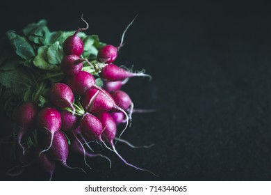 bio self-sufficiency garden radish