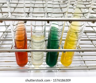 Biochem test for gram negative bacteria (TSI, Motility and Indole, Citrate, Urease)