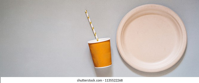 Biodegradable and compostable disposable paper plate, cup and drinking straw