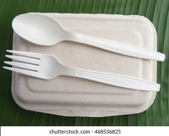 biodegradable lunch box with bio plastic spoon and fork