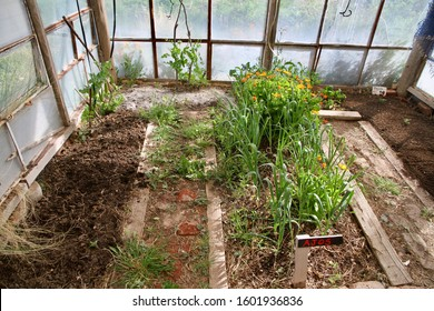 Biodynamic garden totally enclosed to keep animals out.