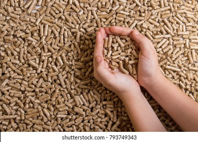 Biofuels. Alternative biofuel from sawdust , wood pellets in hand. The cat litter.