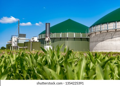 Biogas plant behind maize field