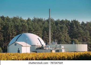 Biogas Plant Or Bioreactor For Fermentation Of Chicken Manure.