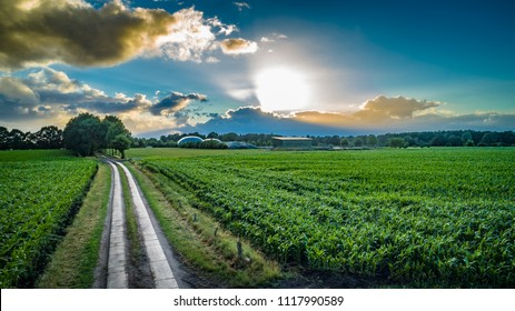 Biogas plant and corn field landscape