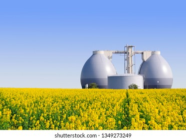Biogas plant next to a yellow rape field in spring