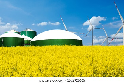 Biogas plant stands behind a rape field with blue sky