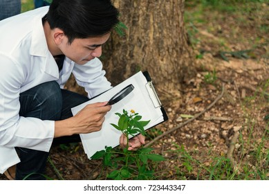 Biologist in white coat holding document in front of examining plants for disease . Plant protection concept.