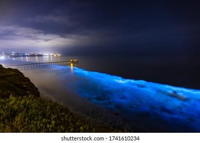Bioluminescence at San Diego Coast