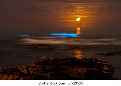 Bioluminescent tide (red tide) at La Jolla Cove glows under a crescent moon.