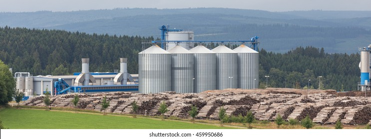 biomass cogeneration plant