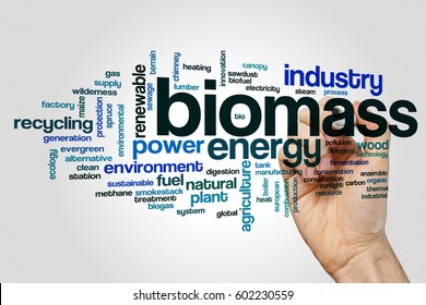 Biomass word cloud concept on grey background.