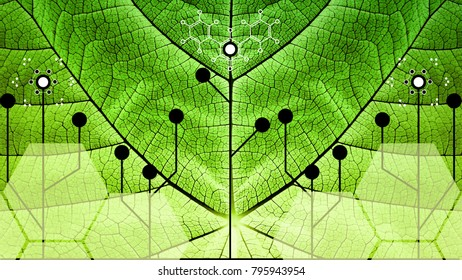 Biomimicry - Nature and Technology - Hybrid Nature - Abstract Illustration