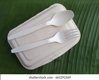 bioplastic spoon fork biodegradable lunch box on banana leaf