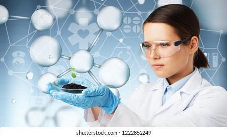 Biotech researcher research food chemistry experiment biorobotics