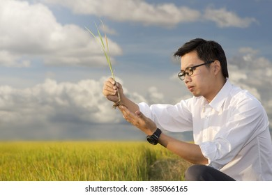 Biotechnology  engineer  examining a plant leaf for disease blue sky background
