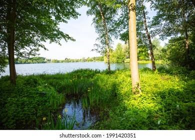 biotop on wesslinger lake, bavaria