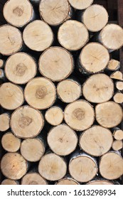 Birch logs are stacked. We see end faces. Background