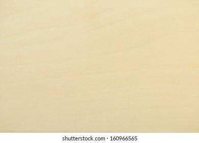 Birch tree Wooden texture captured in the genuine carpentry workshop