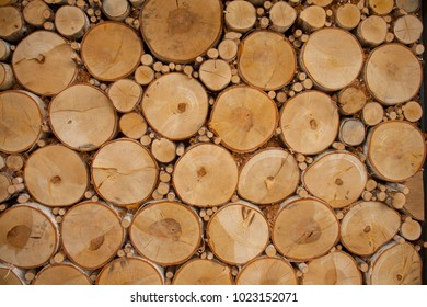 Birch wood neatly cut and stacked into a flat design for interior decoration