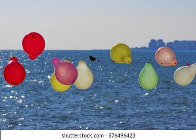 bird and balloons