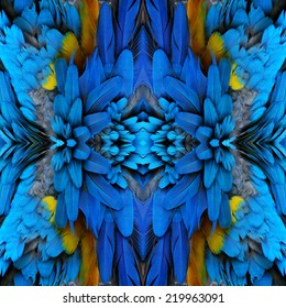 Bird, beautiful pattern background texture made from Blue and Gold Macaw feathers.